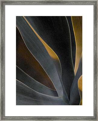 Nocturnal Interludes 'round Midnight 5 Framed Print