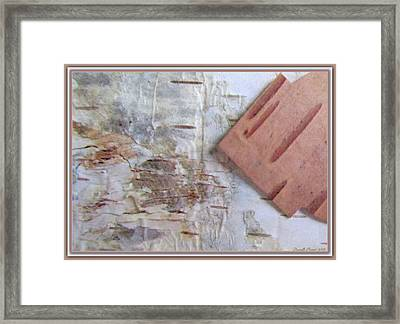 Normand's  Birch Bark  Framed Print by Danielle  Parent