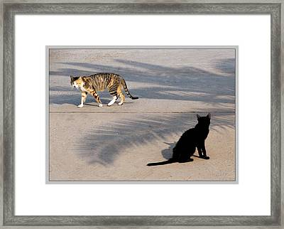North And South Framed Print