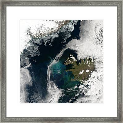 North Atlantic Bloom Framed Print by Science Source