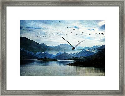 North For The Winter Framed Print