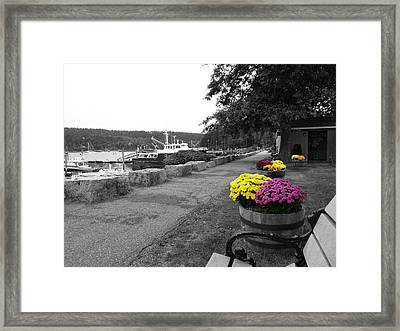 Framed Print featuring the photograph Northeast Harbor by Kelly Reber