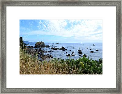 Northern California Coast2 Framed Print by Zawhaus Photography