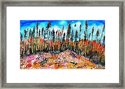 Northern Forest Framed Print by Ion vincent DAnu