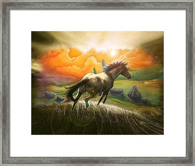 Northern Hills Horse 2 Framed Print by Zoran Peshich