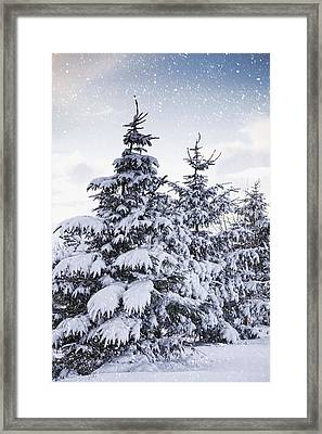 Northumberland, England Snow-covered Framed Print by John Short