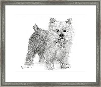 Framed Print featuring the drawing Norwich Terrier by Jim Hubbard