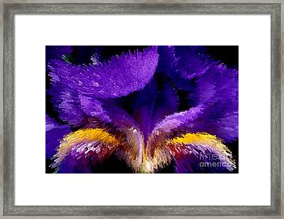Not Your Average Iris Framed Print by Paul W Faust -  Impressions of Light