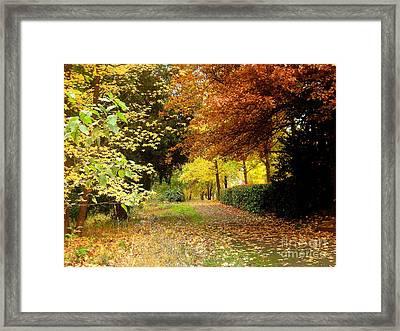 Nov.12-24 Framed Print