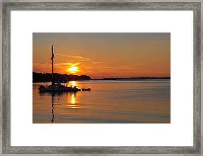 Nova At Sundown Framed Print by Tiffney Heaning