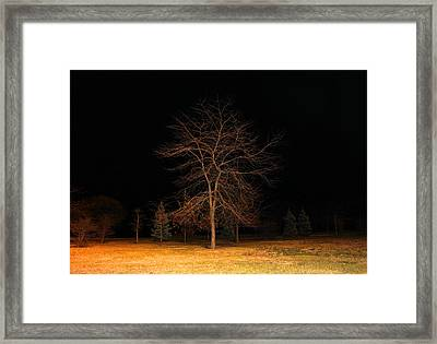 November Night Framed Print