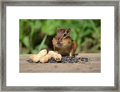 Now This Is A Breakfast Framed Print by Lori Tambakis