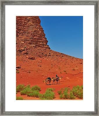 Nubian Camel Rider Framed Print by Tony Beck
