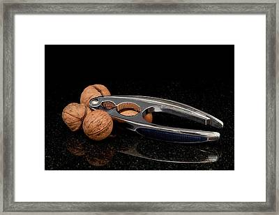 Nut Cracker Framed Print