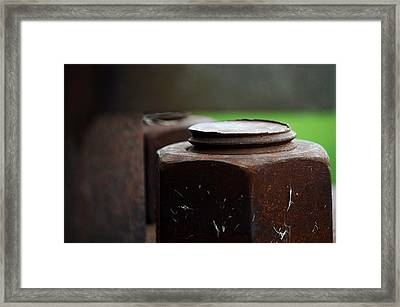 Nuts And Bolts Framed Print by Lisa Phillips