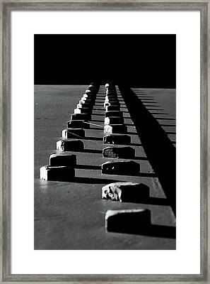 Nuts Framed Print by Sara Hudock
