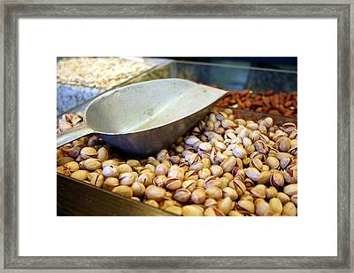 Nuts Framed Print by Tia Anderson-Esguerra