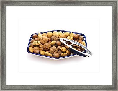 Nuts Framed Print by Tom Gowanlock