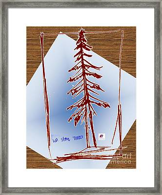 Nw Evergreen Tree Framed Print