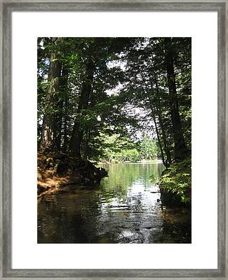 Ny Wildlife Framed Print by Lali Partsvania