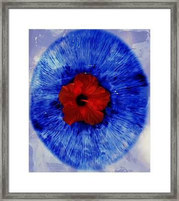 O Framed Print by Claudia Boeckelmann