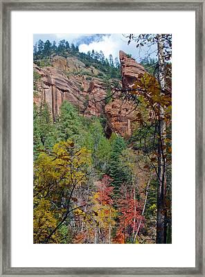 Oak Cliff Framed Print by Brian Lambert