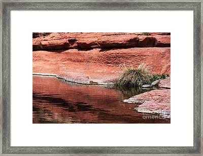 Oak Creek Framed Print by John Rizzuto