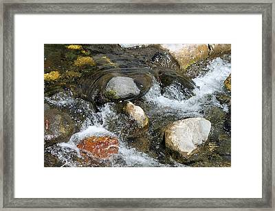 Oak Creek Framed Print by Lauri Novak