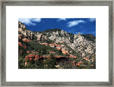 Oak Creek Nature Framed Print by John Rizzuto