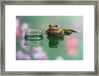 Observation Framed Print