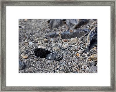 Obsidian Framed Print