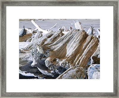 Ocean Driftwood Landscape Art Prints Coastal Views Framed Print by Baslee Troutman