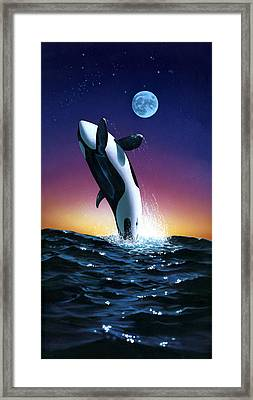 Ocean Leap Framed Print by MGL Studio - Chris Hiett
