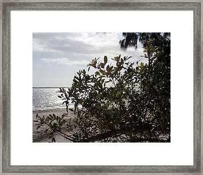Framed Print featuring the photograph Ocean Light by Lou Belcher