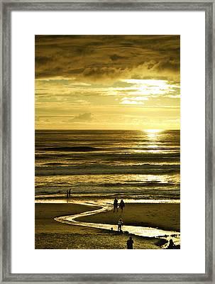 Ocean Play 2 Framed Print by Dale Stillman