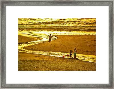 Ocean Play Framed Print by Dale Stillman