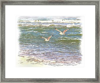 Ocean Seagulls Framed Print by Cindy Wright