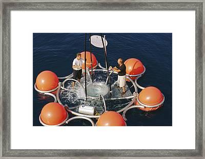 Ocean Technology Framed Print by Alexis Rosenfeld