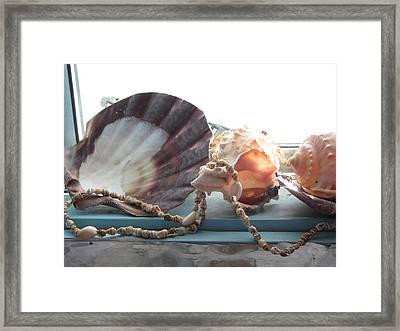 Ocean Treasures Framed Print by Amy Bradley