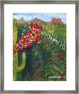 Ocotillo Spring Framed Print