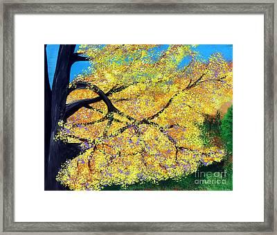 October Fall Foliage Framed Print