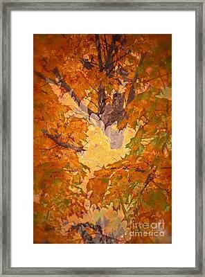 October In Washington Framed Print by Gwyn Newcombe