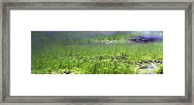 Ode To Monet Framed Print by Bob Retnauer