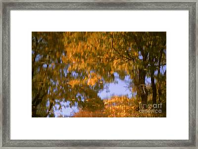 Ode To Monet Framed Print by Janeen Wassink Searles