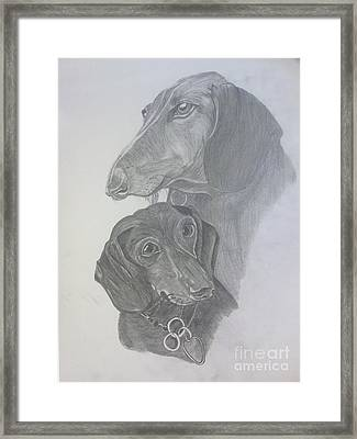 Odi And Eli Framed Print by Lora Marsh