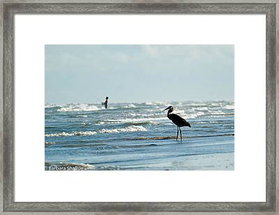 Of Like Mind Framed Print by Barbara Shallue