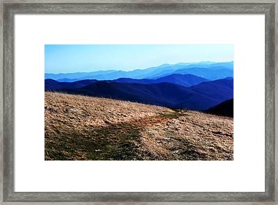 Of Peace Framed Print