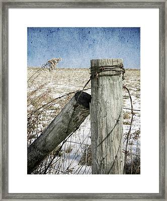 Of Wood And Wire Framed Print by Christine Annas