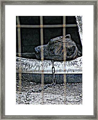 Off Duty Framed Print by Joe Jake Pratt