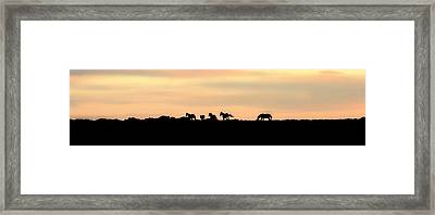 Off Into The Sunset Framed Print by Donna Duckworth